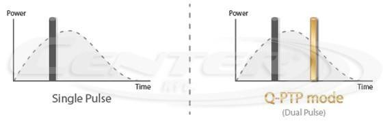 bison-lucid-q-ptp-grafikon